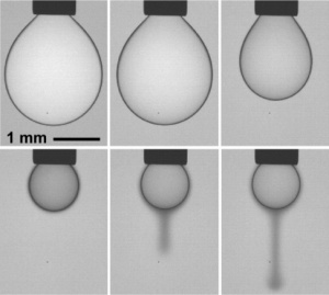The researchers created a 2-D liquid consisting of nanoparticles at the interface between a drop of oil and surrounding water.