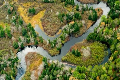 The Two Hearted River, in Michigan's Upper Peninsula. Restoration efforts in the Two Hearted River Watershed include the removal of impassable road culverts to restore aquatic ecosystem connectivity. Image credit: Drew Kelly for The Nature Conservancy