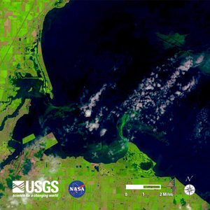 Lake Erie's algal bloom off of Toledo Ohio as seen from satellite image from USGS on August 1, 2014. Image credit: USGS
