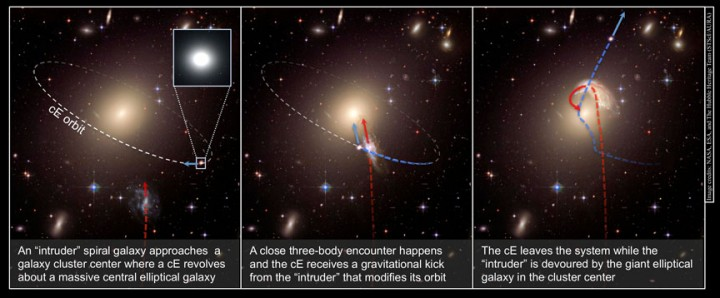 "This schematic illustrates the creation of a runaway galaxy. In the first panel, an ""intruder"" spiral galaxy approaches a galaxy cluster center, where a compact elliptical galaxy (cE) already revolves around a massive central elliptical galaxy. In the second panel, a close encounter occurs and the compact elliptical receives a gravitational kick from the intruder. In the third panel, the compact elliptical escapes the galaxy cluster while the intruder is devoured by the giant elliptical galaxy in the cluster center. Image credit: NASA, ESA, and the Hubble Heritage Team"