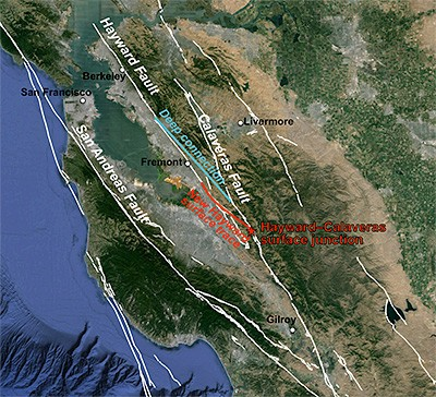 The Bay Area fault system and the spot (red star) where the Hayward Fault branches off from the Calaveras Fault. The white lines indicate faults recognized by the USGS. The red line is the newly discovered surface trace connecting the southern end of the Hayward Fault to the Calaveras Fault, once thought to be an independent system. The surface trace is offset by several kilometers from the deep portion of the fault 3-5 km below ground (blue line). Image credit: Estelle Chaussard image, UC Berkeley