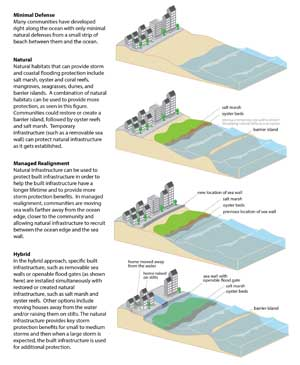 Examples of coastal defenses including natural infrastructure, managed realignment, and hybrid approaches. Image credit: NOAA