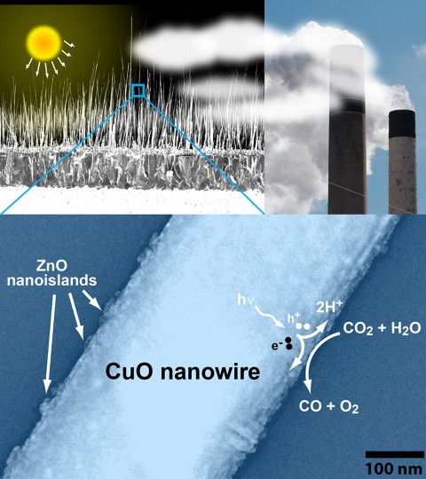 Researchers developed a method to tap solar energy to convert carbon dioxide to different materials.