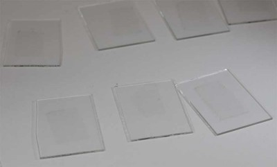 Slides containing single-layer graphene samples.
