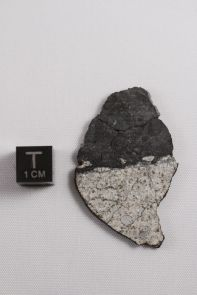 This image shows a meteorite fragment found after a 17-20 meter asteroid disrupted in the atmosphere near Chelyabinsk, Russia on Feb. 15, 2013. It shows a beautiful contact between impact melt (dark material at top of image) and chondritic host (light material at bottom of image). The researchers argue these impact melts were likely created when high-velocity debris from the moon-forming impact hit the parent asteroid of the Chelyabinsk bolide and heated near-surface material. Image credit: Vishnu Reddy