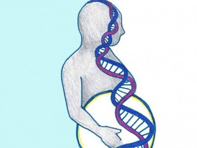 Some false-positive results from prenatal genetic screening blood tests may be due to extra DNA segments on a maternal chromosome.