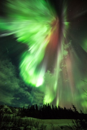 A spectacular green and red aurora photographed early this morning March 17, 2015, from Donnelly Creek, Alaska. Credit: Sebastian Saarloos