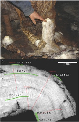 Above, photo of the small stalagmite in the Mawmluh cave before it was collected. Below, a gray-scale image of a slab of the stalagmite after it was prepared for analysis. The red lines show the locations where the layers were counted and the green lines show the locations where the material was dated and the numbers are the dates with the uncertainties of the measurements. Image credit: Jessica Oster.