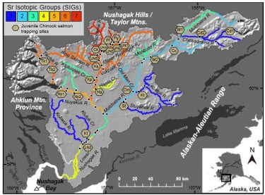 Map of the Nushagak River showing various strontium isotope groups. Image credit: Sean Brennan, UW