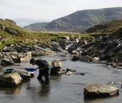 Panning for gold in Ireland
