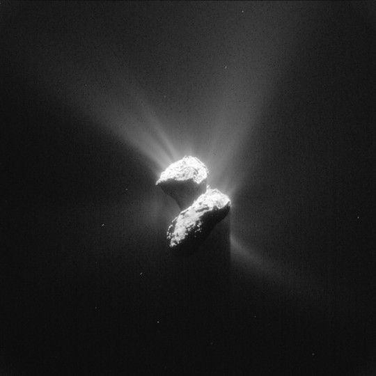 Magnificent! Comet 67P/Churyumov-Gerasimenko photographed by Rosetta from about 125 miles away on June 5, 2015. Now only two months from perihelion, the comet's crazy with jets of dust and gas. One wonders what the chances are of a gassy geyser erupting beneath or near Philae and sending it back into orbit again. Credit: ESA/Rosetta/NAVCAM – CC BY-SA IGO 3.0