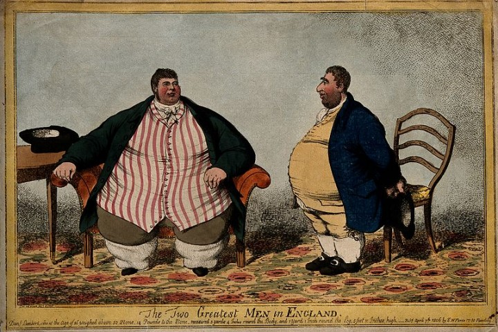 Obesity was a problem for many years, but fight against it is particularly relevant for contemporary times. Now scientists think that polyphenols found in fruit can turn white fat into obesity-fighting beige fat. Image credit:  Wellcome Images via Wikimedia, CC-BY-4.0
