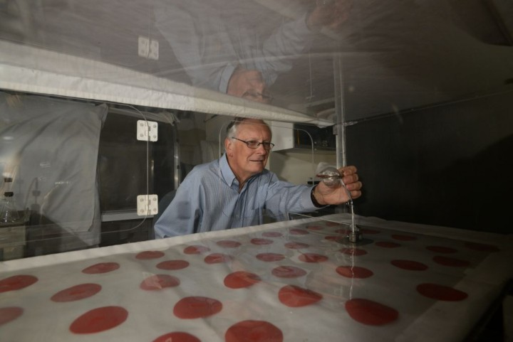 Ring Cardé, a distinguished professor of entomology at UC Riverside, is seen here working on an experiment involving a wind tunnel. Photo credit: Carrie Rosema.