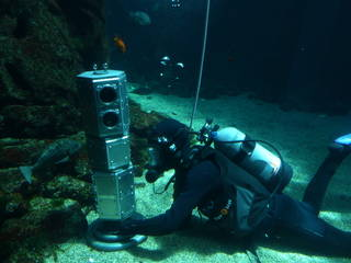 Researchers tested an under-ice rover's systems at the bottom of a large aquatic exhibit at the California Science Center. Principal investigator Andy Klesh is also a volunteer diver at the science center. Credits: NASA/JPL-Caltech