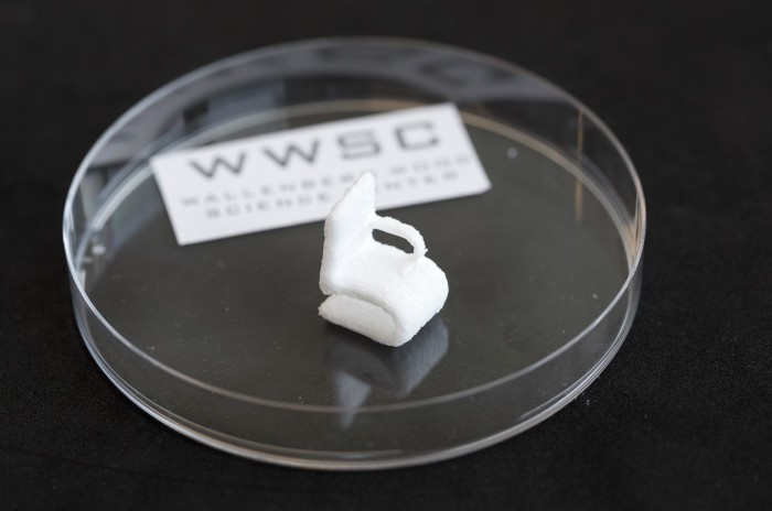This tiny white chair represents quite a significant achievement – it is the first object ever to be printed from cellulose in a 3D bioprinter. Process was challenging as cellulose does not melt when heated, but scientists are already thinking on using other wood biopolymers and finding practical application for this technology. Image credit: Peter Widing
