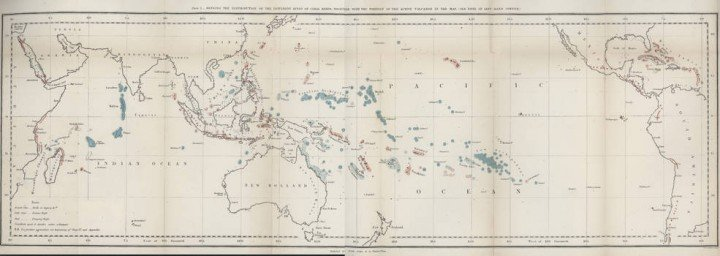 "The structure and distribution of coral reefs by Charles Darwin was developed during his voyage of the Beagle 1832 to 1836. When Darwin returned, his theory of the origin of coral reefs, communicated to the Geological Society of London on May, 31 1837, made his scientific reputation. This map was first published in ""The Structure and Distribution of Coral Reefs"" (London, 1842)."
