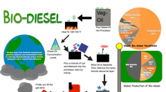 Sample infographic on biodiesel.