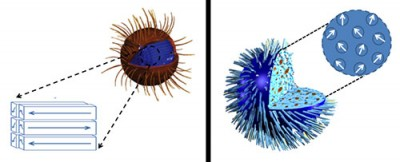 Iron oxide nanoparticles with a neatly-stacked internal structure (left) need a stronger magnetic field than expected to heat up, while those with a more haphazard arrangement heat up more quickly, even under a weak field. The findings, which run contrary to expectations, could affect which nanoparticles are chosen to treat certain types of cancer. Image credit: NIST