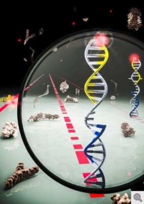 University of Michigan researchers have developed a technique that allows them to efficiently identify snippets of genetic information called microRNAs in blood. The advance could one day lead to a way to scan for multiple types of cancer at once with a simple blood test. In this illustration, the red, blue and black strands represent different microRNAs that, in the new technique, attach and detach to DNA, which is gray in the image. The DNA glows fluorescent when an RNA attaches and the particular pattern of blinking tells the researchers which microRNA has attached. Image credit: MolGraphics