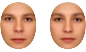 These two faces can only be distinguished by the distances between their attributes: the face on the left displays masculine inter-attribute spacing while the one on the right displays the feminine form.