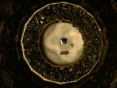 One of the metallic samples studied, niobium diselenide, is seen here–the square in the center–as prepared for an X-ray diffraction experiment. Credit: University of Chicago/Argonne National Laboratory.