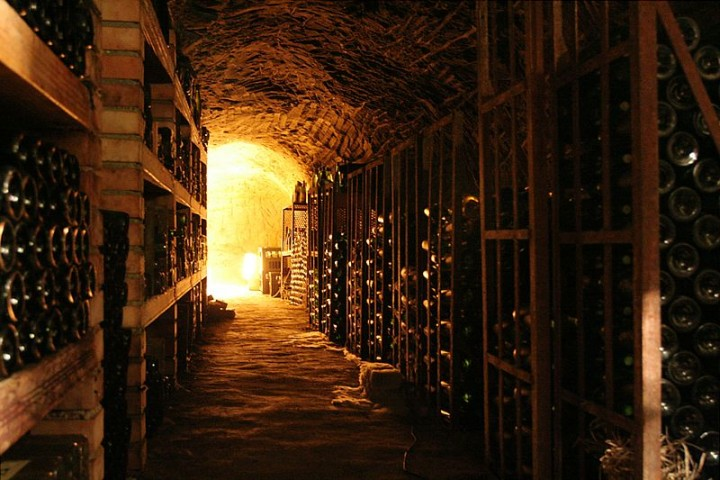 Fine wines are not just a sophisticated beverage. Now it is also a good place to invest your money. And now there is a novel artificial intelligence approach to predict fluctuations in prices in the market of fine wines. Image credit: Che via Wikimedia, CC-BY-SA-2.5