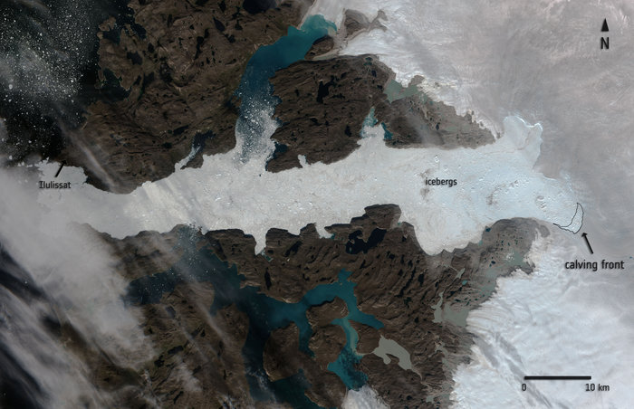 This optical image of Jakobshavn glacier in western Greenland, acquired by Sentinel-2A on 16 August 2015, offers a valuable perspective of the scale of the calving event that took place between 14 and 16 August. The contour indicates the area of ice lost between images acquired on 6 and 16 August. All-weather radar images from the Sentinel-1A satellite provide a year-round view of glacier dynamics. Copyright Copernicus Sentinel data (2015)/ESA