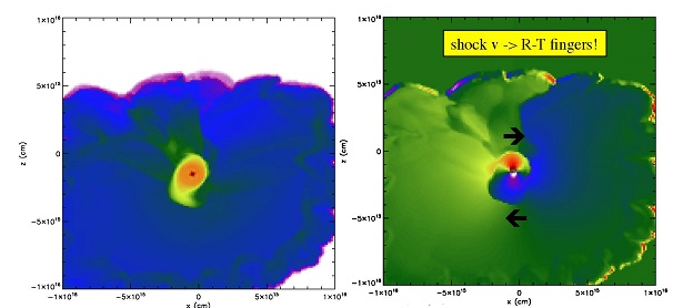 These images show the central plane of a rotating disk orbiting a newly formed protostar (dark dot) formed in a three-dimensional model of the shock-triggered collapse of a molecular cloud of gas and dust. Density is shown on the left, while the x velocity plot on the right shows how the shock (outer edge) has injected fingers with motions that are responsible for producing the spin of the disk around the central protostar. Image is provided courtesy of Alan Boss.
