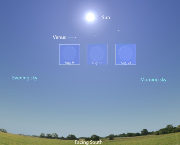 The Sun's position is shown for 1 p.m. local daylight time facing due south, while Venus and its corresponding phase is depicted before, at and after conjunction. As Venus moves from left to right south of the Sun, its phase changes from evening crescent (left) to morning crescent from our perspective on Earth. Source: Stellarium with additions by the author