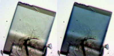 UBMOF-2, a crystalline material, goes from clear to blue when it's exposed to ultraviolent light. Heating the material up brings it back to its original hue. As the material shifts between colors, its structure is also changing — a property that could enable it to act as a sponge that traps materials inside shape-shifting pores. Image credit: Ian Walton