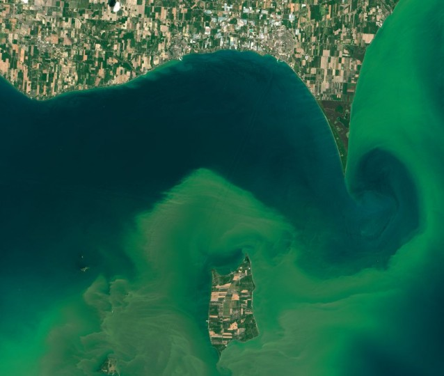 NASA satellite data on harmful algal blooms such as this recent bloom in Lake Erie help local authorities assess public health risks and target responses. Credits: NASA