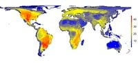 Fig 1: The natural diversity of large mammals as it would appear without the impact of modern man (Homo sapiens). The figure shows the variation in the number of large mammals (45 kg or larger) that would have occurred per 100 x 100 kilometre grid cell. The numbers on the scale indicate the number of species. Image credit: Søren Faurby