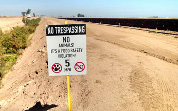 This sign, located in the Imperial Valley, suggests that animals are considered a threat to food safety. Image credit: Patrick Baur