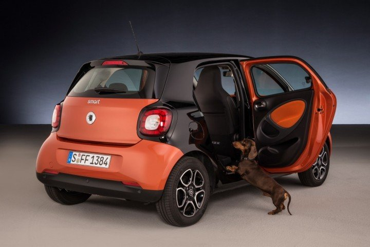Entrance height to the Smart Forfour can be lowered by twelve centimetres in a very short duration of time, which makes it easier for old and small dogs to jump in for the ride. Image credit: media.daimler.com