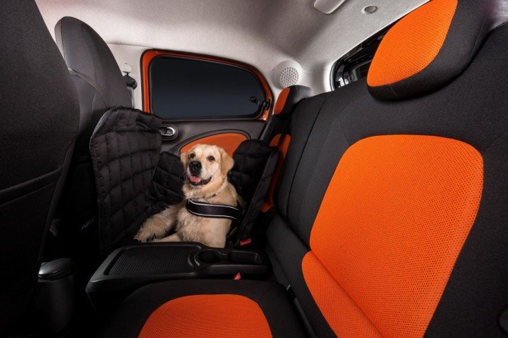 Smart forfour can accommodate special rugs and crates to make journey even safer for the dog and passengers. However, owners should never forget to use an appropriate seatbelt for their dog. Image credit: media.daimler.com