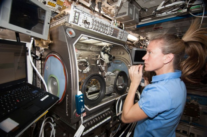 NASA astronaut Karen Nyberg works with the InSPACE-3 experiment in the Microgravity Science Glovebox (MSG) on the International Space Station. InSPACE-3 applies different magnetic fields to vials of colloids, or liquids with microscopic particles, and observes how fluids can behave like a solid. Results may lead to improvements in the strength and design of materials for stronger buildings and bridges. Credits: NASA