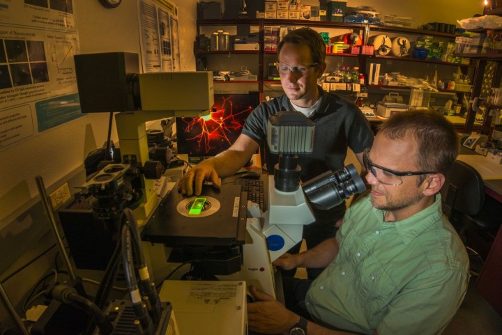 Sandia National Laboratories researchers George Bachand and Wally Paxton at a confocal microscope illuminating the first biomolecular machines to assemble complex polymer structures. (Photo by Randy Montoya)