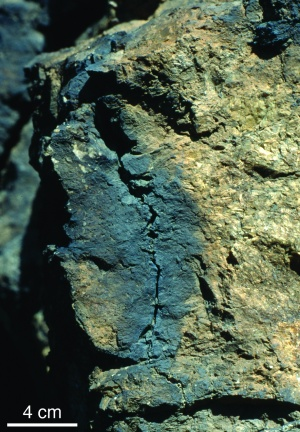 A rock fulgurite revealed that lightning strikes alter quartz's crystal structure on the atomic level.