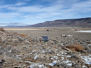 Scientists in the College of Science's Nevada Seismological Laboratory placed additional earthquake sensors in and around the Sheldon Wildlife Refuge in far northwest Nevada where a swarm of earthquakes has been active for more than a year, with several greater than magnitude 4.0 events.