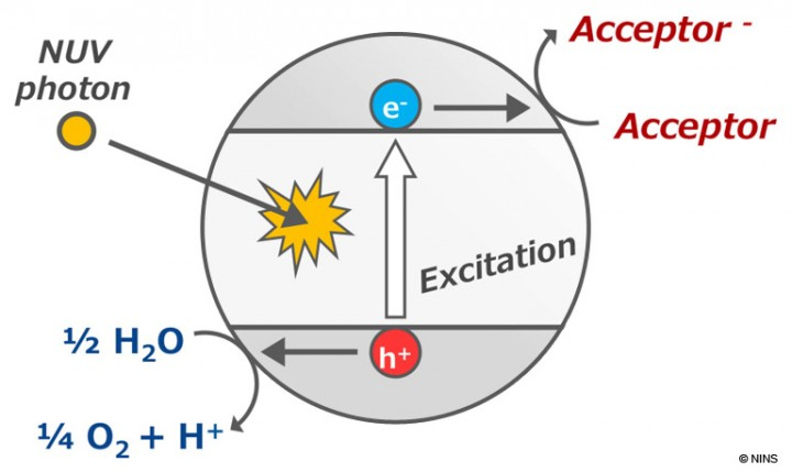Figure. Photocatalytic Reaction of Titanium Oxide. Abiotic oxygen can be produced from water in the presence of titanium oxide and an electron acceptor under UV light. Our report suggests that this photocatalytic reaction can supply significant amount of abiotic oxygen on habitable extrasolar planets.