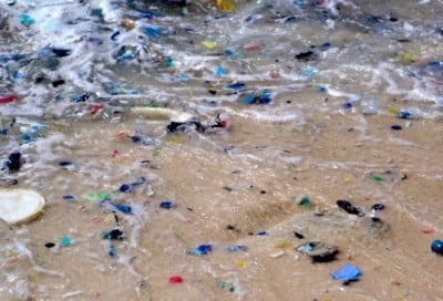 Plastic fragments washing in the surf on Christmas Island in the northeastern Indian Ocean. Image credit: Britta Denise Hardesty