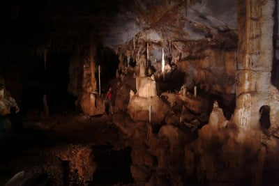 The cave room in Puerto Princesa Subterranean River National Park in Palawan, Philippines. A stalagmite collected from this location served as a record for ancient rainfall data. Image credit: Raf Rios