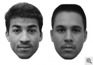 Sample morphed multiracial faces from the racial-categorization task. Image credit: Ho et al.