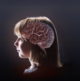 The National Science Foundation has awarded Arizona State University — and three partner institutions — a three-year, $3.6 million grant to study how healthy brains create memories of odors, as well as how they fail when affected by disease. Photo credit: Arizona State University