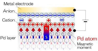 Induced magnetic moment in palladium (Pd) by application of voltage One possible mechanism to explain the increased magnetic moment is that, when a voltage is applied to the structure shown in the figure, charges within the palladium layer accumulate near the surface because the surface is covered by ions. Image credit: Chiba Lab