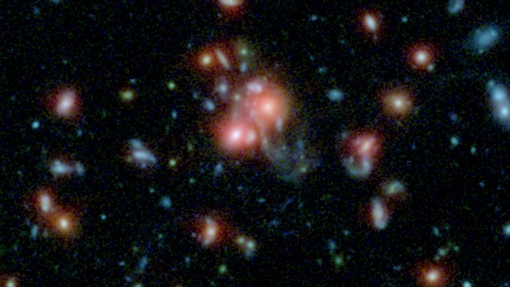A massive cluster of galaxies, called SpARCS1049+56, can be seen in this multi-wavelength view from NASA's Hubble and Spitzer space telescopes. Image credit: NASA/STScI/ESA/JPL-Caltech/McGill