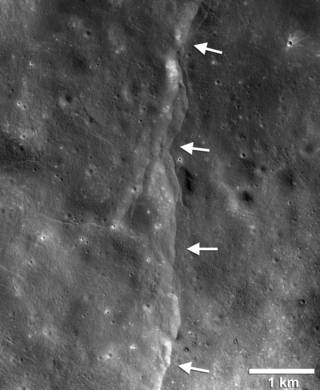 Thousands of young, lobate thrust fault scarps have been revealed in Reconnaissance Orbiter Camera images (LROC). Lobate scarps like the one shown here are like stair-steps in the landscape formed when crustal materials are pushed together, break and are thrust upward along a fault forming a cliff. Cooling of the still hot lunar interior is causing the Moon to shrink, but the pattern of orientations of the scarps indicate that tidal forces are contributing to the formation of the young faults. Credits: NASA/LRO/Arizona State University/Smithsonian Institution