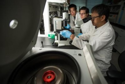 Yong-Hui Zheng, associate professor of microbiology and molecular genetics, Tao Zhou, postdoctoral research, and Dylan Frabutt, doctoral student, were part of an international team to find a natural treatment for HIV. Photo credit: G.L. Kohuth