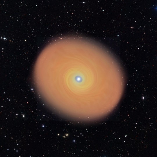 This is an artist's impression of the disk around the forming high-mass star AFGL 4176. The disk is 50 times larger than the size of Pluto's orbit, but it rotates around its star in a similar way to disks around forming low-mass stars. Image credit: K.G. Johnston and ESO (background image)