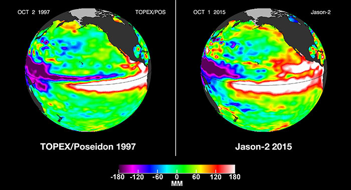 This visualization shows side by side comparisons of Pacific Ocean sea surface height (SSH) anomalies of what is presently happening in 2015 with the Pacific Ocean signal during the famous 1997 El Niño. These 1997 and 2015 El Niño animations were made from data collected by the TOPEX/Poseidon (1997) and the OSTM/Jason-2 (2015) satellites. Credits: NASA's Jet Propulsion Laboratory